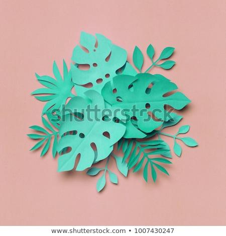 3d render soyut beyaz kâğıt çiçekler pastel Stok fotoğraf © balasoiu