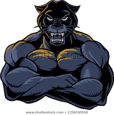 Karikatur Bodybuilder böse Illustration schauen Sport Stock foto © cthoman