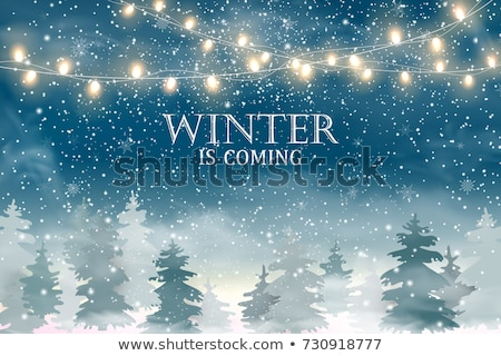 Winter is coming. Christmas, snowy night woodland landscape with falling snow, firs, snowflakes for  Stock photo © olehsvetiukha