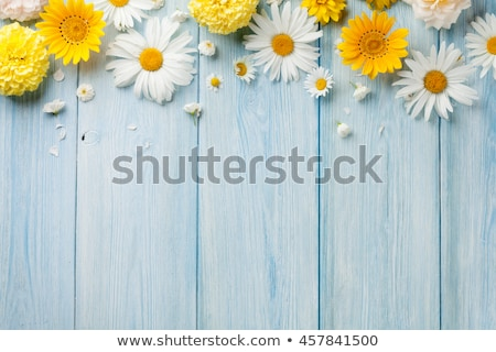 Foto stock: Old Wooden Background With Frame And Bunch Of Flower