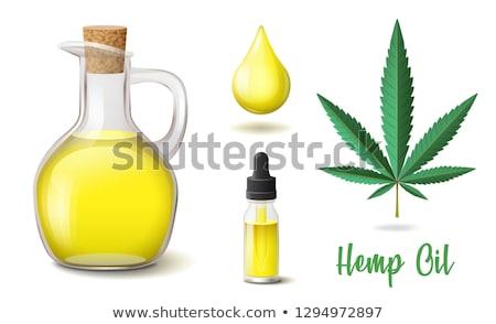 zielone · pozostawia · ikona · ilustracja · odizolowany - zdjęcia stock © marysan