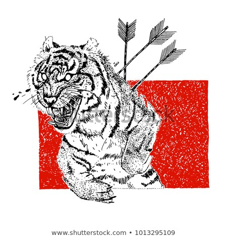 Hand drawn aggressive tiger with arrows and tears. Tattoo theme. Vector sketch illustration. stock photo © bonnie_cocos