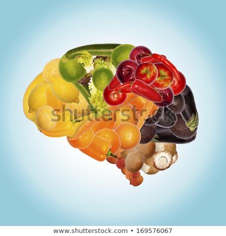 Voedsel hersenen goede geheugen het voorkomen medische Stockfoto © furmanphoto