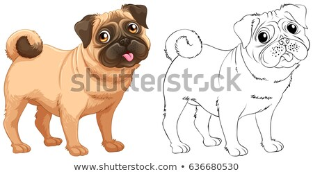 firkák · állat · kutya · illusztráció · természet · háttér - stock fotó © colematt