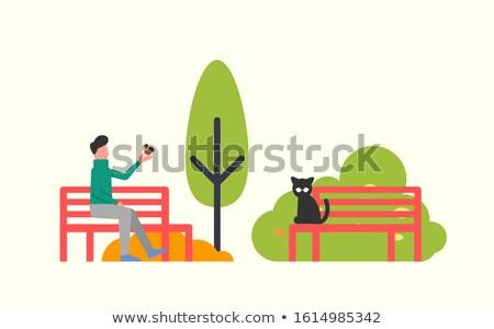 Man Sitting on Bench, Black Cat, Autumn Trees Stock photo © robuart