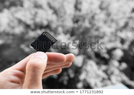 black memory card on gray background Stock photo © romvo
