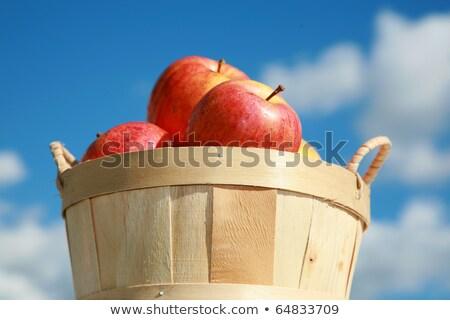 яблоки корзины свежие зеленый Сток-фото © lichtmeister