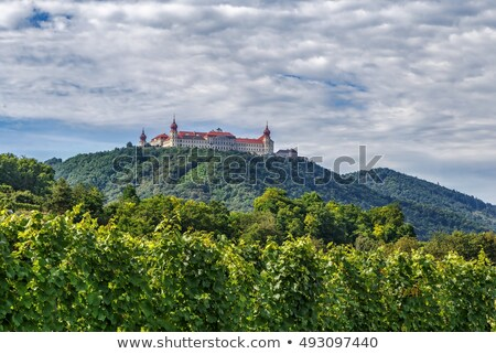 view from Gottweig Abbey hill, Austria Stock photo © borisb17