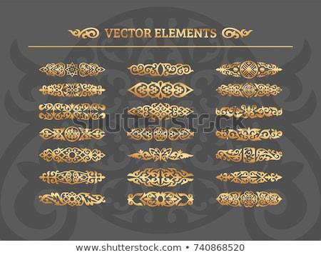 vektor · szett · kalligrafikus · terv · elemek · oldal - stock fotó © blue-pen