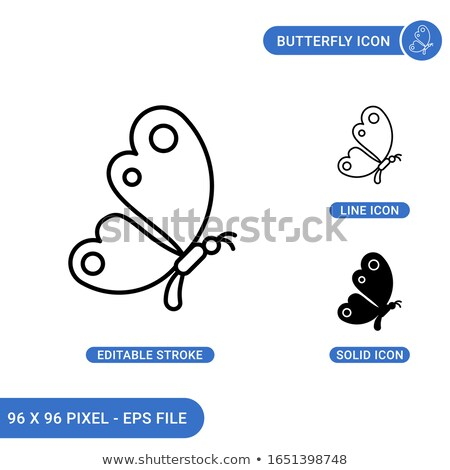Butterfly line icon, insect sign. Editable stroke. Stock Vector illustration isolated on white backg Stock photo © kyryloff