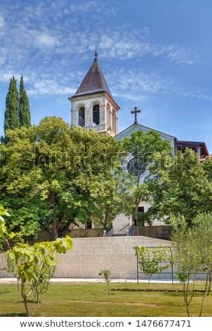 Isla parque Croacia árbol edificio forestales Foto stock © borisb17
