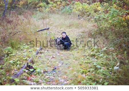 Adorable Little Boy In A Autumn Forest With Greyhound Zdjęcia stock © Lopolo