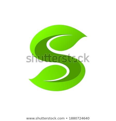Bio signo forma hojas hierba blanco Foto stock © butenkow