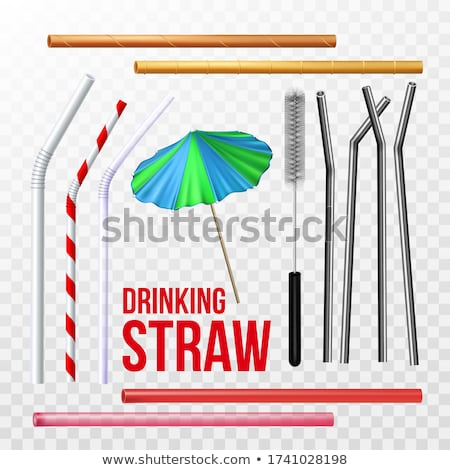 Reusable Steel Drinking Straw And Brush Set Vector Stock photo © pikepicture