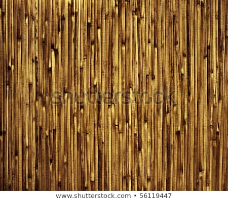 Japanese reed mat Stock photo © homydesign
