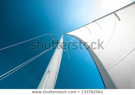 Freedom, sunshine, sky, sailing. Stock photo © lithian