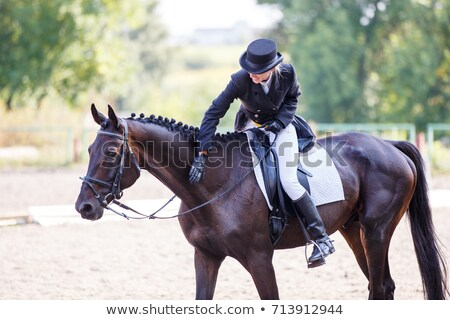young woman patting her horse stock photo © photography33