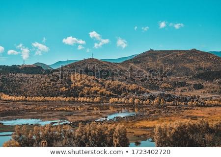 Antigo castelo ponto de referência famoso topo colina Foto stock © bbbar