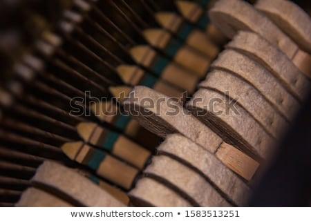 Piano mechanism gavel - string, pins and hammers  Stock photo © vladacanon