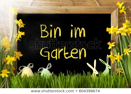 Yellow Narcissus In Wooden Bin And Easter Foto d'archivio © Nelosa