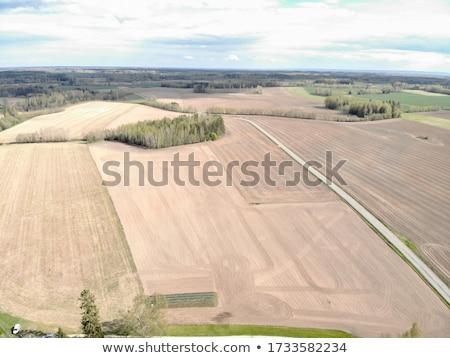 Plowed land Stock photo © stevanovicigor