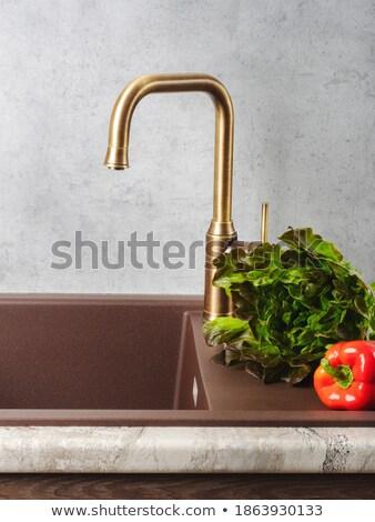 kitchen still life with chrome tap Stock photo © tolokonov