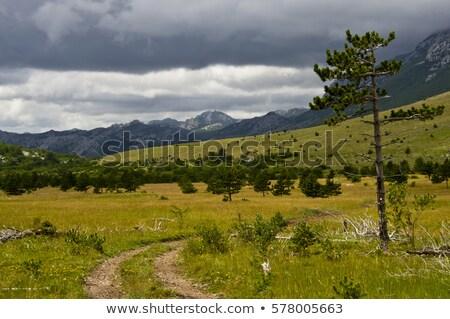 Meseta parque montanas Croacia montana Foto stock © Hochwander