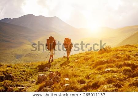 Hiker on a Mountain Pass Stock photo © wildnerdpix