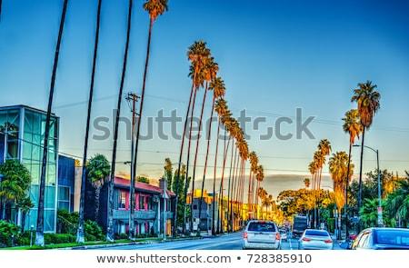 Stad Los Angeles zonsondergang hemel licht berg Stockfoto © meinzahn