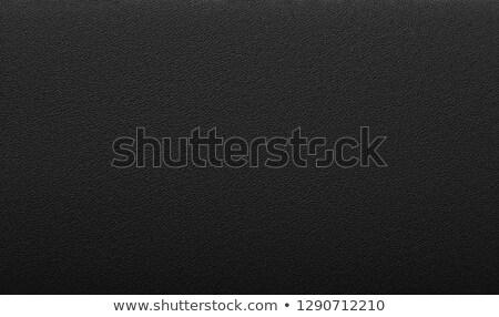 Background , structure fine leather Stock photo © armin_burkhardt