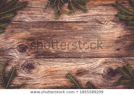 weathered fir plank Stock photo © taviphoto