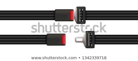 Vehicles Seat Belt - Isolated Stock photo © ozaiachin