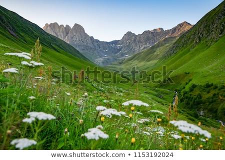 Kazbek mountains, Georgia Stock photo © joyr