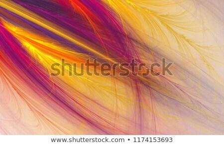 実例 フラクタル 明るい フローラル パターン コンピュータ ストックフォト © yurkina