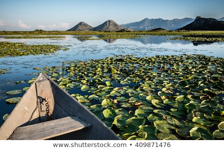 meer · landschap · park · natuur - stockfoto © Steffus