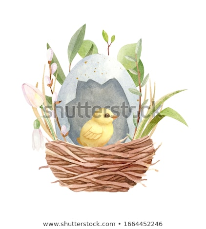 Kellemes húsvétot zöld vízfesték húsvéti tojás illusztráció vektor Stock fotó © orensila