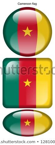 Camarões bandeira oval botão prata isolado Foto stock © Bigalbaloo