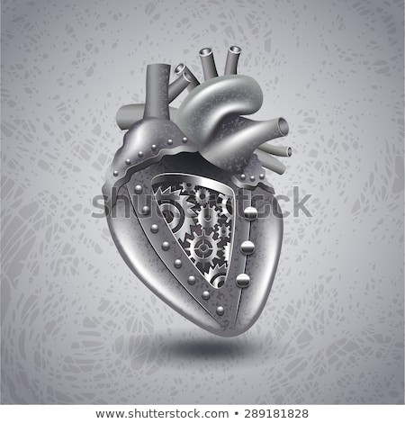 heart anatomy on a abstract gears background stock photo © tefi