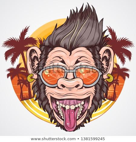 Naplemente illusztráció majom sziluett dzsungel történelem Stock fotó © adrenalina