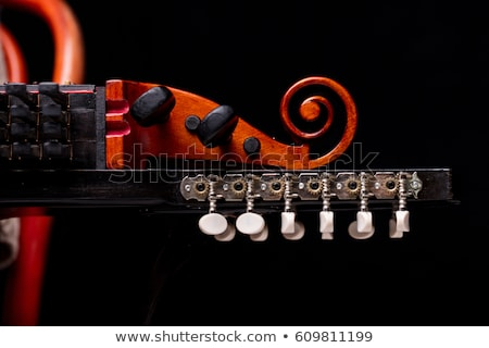 nyckelharpa's scroll, headstock and pegbox details Stock photo © Giulio_Fornasar