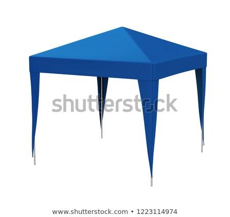 Azul transparente edificio metal arquitectura construir Foto stock © vrvalerian