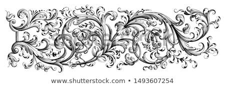 Filigree Heraldic Floral Pattern Scroll Design Stock photo © Krisdog