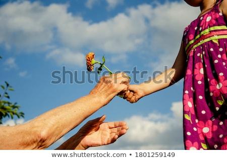 nieta · abuela · flores · sonriendo · amor - foto stock © is2