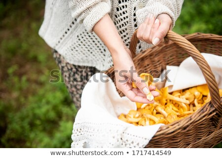 Woman with basket of wild mushrooms Stock photo © IS2