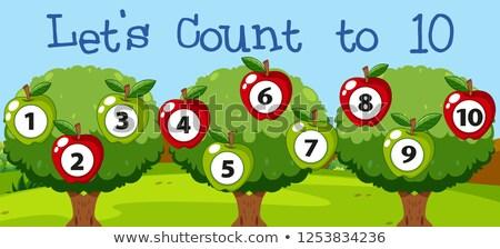 ストックフォト: 数学 · リンゴ · 10 · 実例 · 風景 · 背景