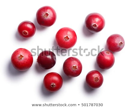cranberries top view paths stock photo © maxsol7