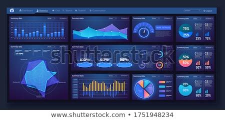Financiële gegevens beheer app interface sjabloon Stockfoto © RAStudio