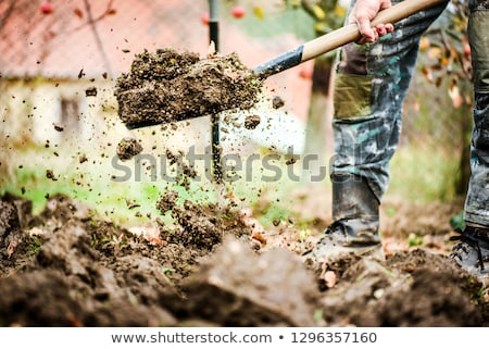 A shovel digging ground Stock photo © bluering