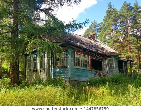 Ruined house in the woods Stock photo © colematt