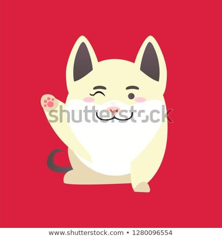 Blanche porc visage patte Photo stock © robuart